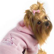 > collection - dog fashion - angel