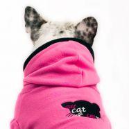 > Kolekce - psí móda 2009 - Cat