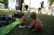 > Výstava psů 2010 -