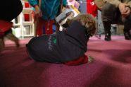 > International Dog Show Prague 2009 -